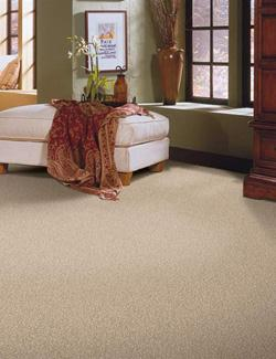 carpet flooring in downingtown